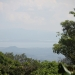 coffeeplantation_costarica009