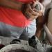 costa-rica_050512_5674