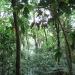costa-rica_050212_5537