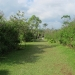 costa-rica_050212_5599