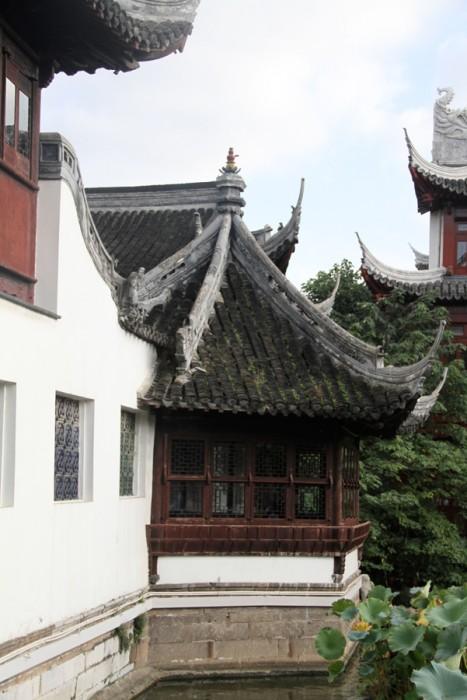 China_Shanghai_091811_3800